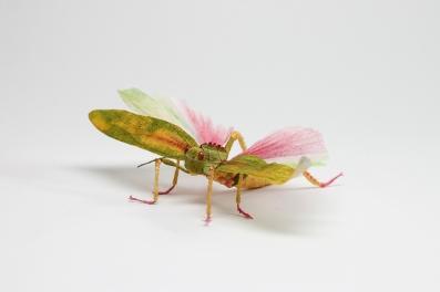 Crepe_Paper_Insects_PaperArt_Tropidacris_Locust_by_faltmanufaktur00 (Kopie)