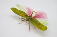 Crepe_Paper_Insects_PaperArt_Tropidacris_Locust_by_faltmanufaktur04