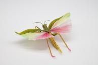Crepe_Paper_Insects_PaperArt_Tropidacris_Locust_by_faltmanufaktur05 (Kopie)