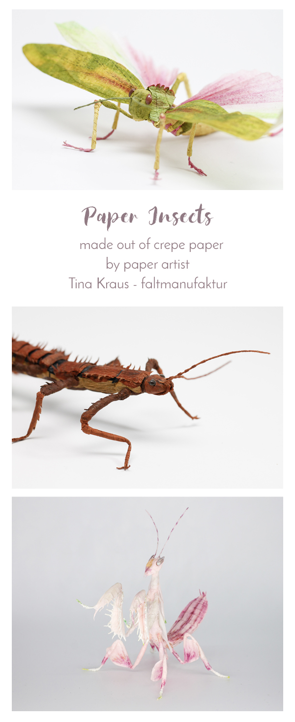 PinItCrepe_Paper_Insects_PaperArt_by_faltmanufaktur04
